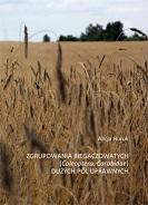 Okładka, Zgrupowania biegaczowatych (Carabidae, Coleoptera) dużych pól uprawnych, Alicja Huruk